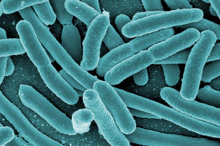 Инфекционный простатит: симптомы и методы лечения