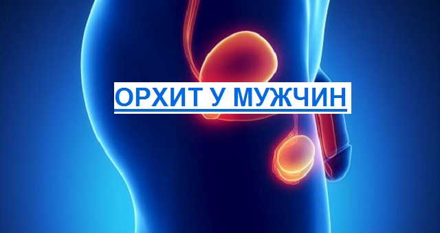 воспаление яичек у мужчин