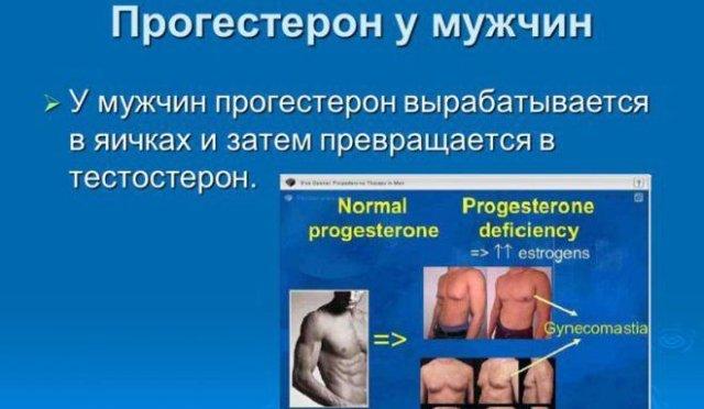 Прогестерон в мужском организме