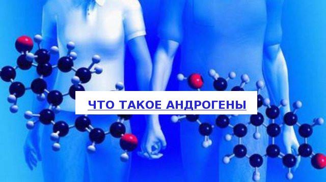 Влияние андрогенов на организм