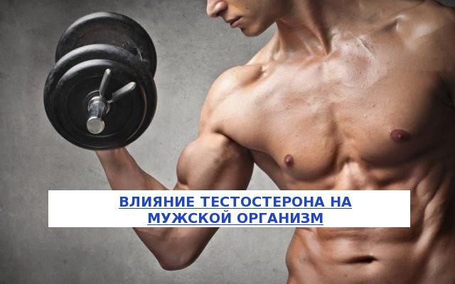 Как влияет тестостерон на мужчин