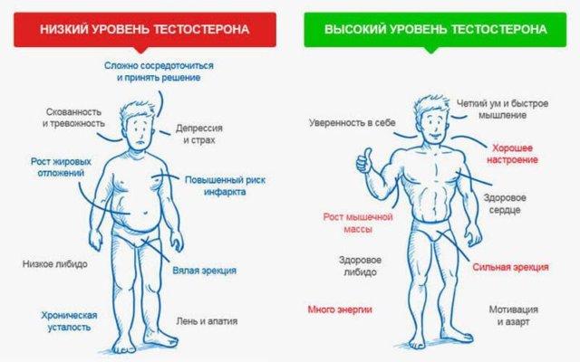 Недостаток тестостерона