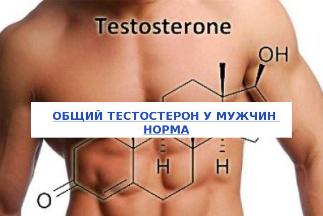 Общий тестостерон у мужчин норма