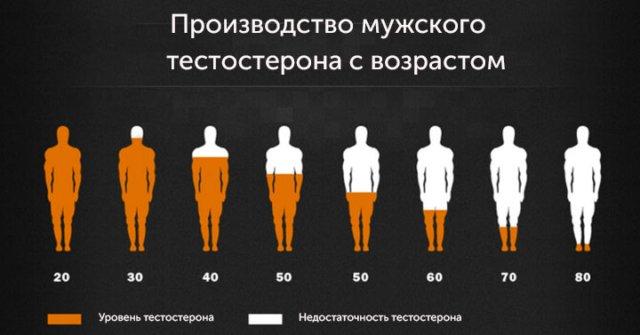 Общий тестостерон норма по возрасту