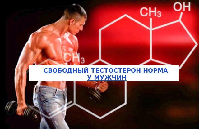 Свободный тестостерон нормы у мужчин