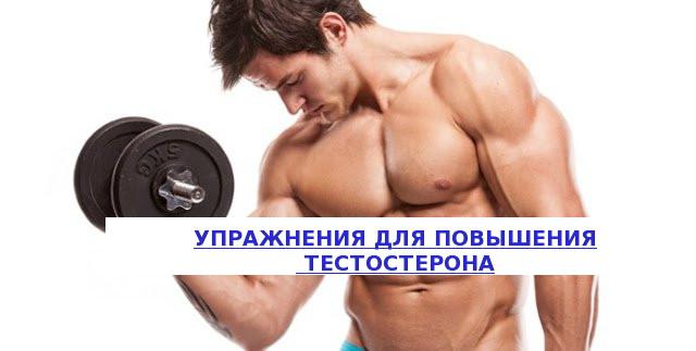 Силовые упражнения повышающие сексуальную потенцию