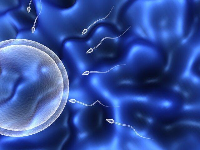 бактериоспермия у мужчин лечение