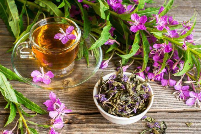 как пить иван чай при простатите