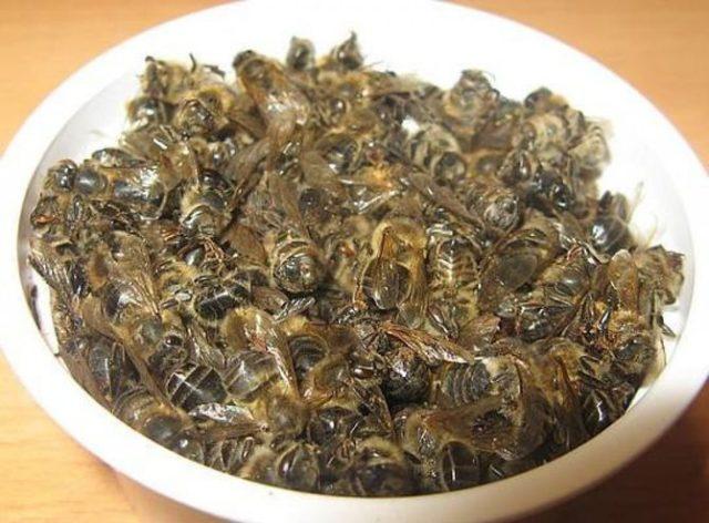 лечение аденомы простаты пчелиным подмором рецепты