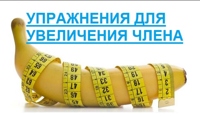 упражнения для увеличения длины члена